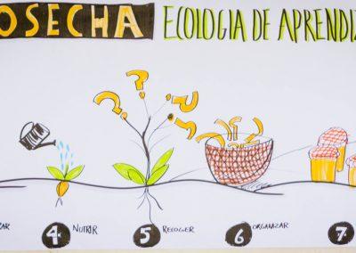 18_cosechaEcologiaAprendizaje